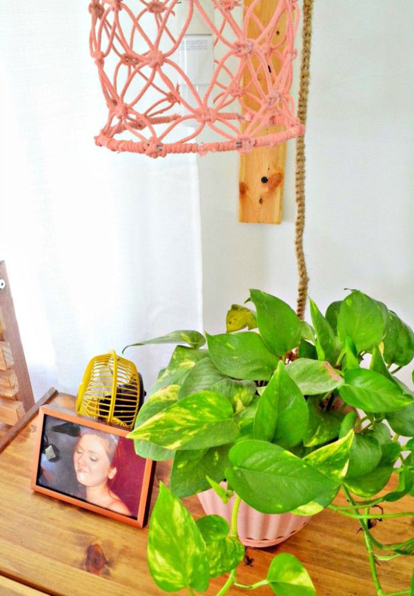a desk with plant and Novelty-in-boho-bedrooms