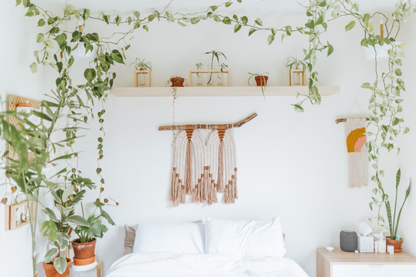 boho bedroom makeover on a budget just with plants
