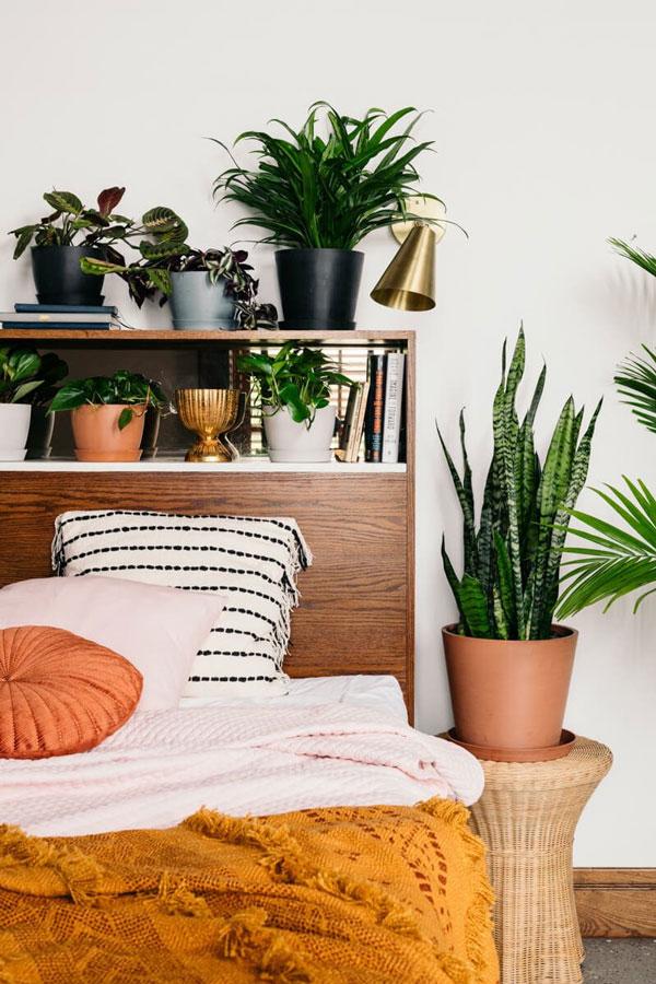 indoor-plants-boho-bedroom